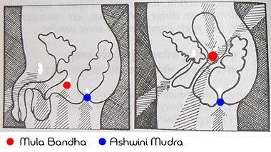 mula-bandkha1